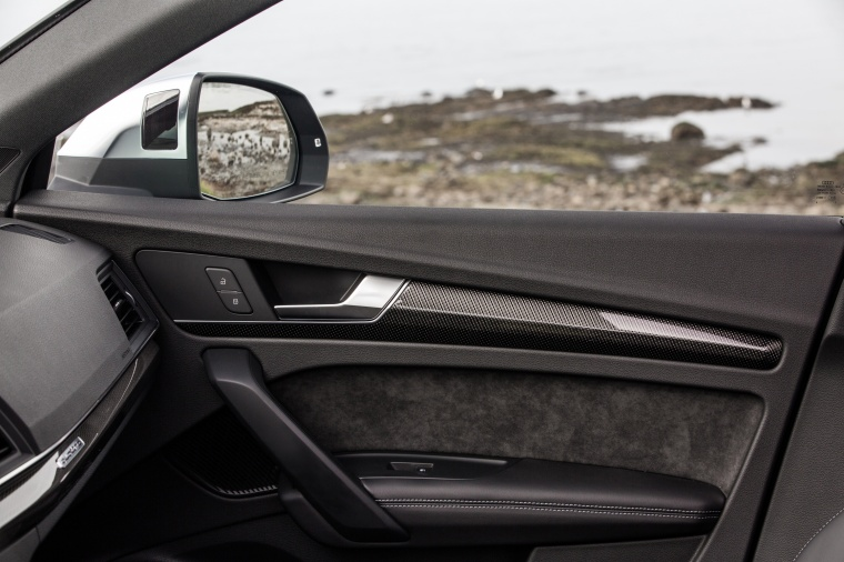 2018 Audi SQ5 quattro Door Panel Picture