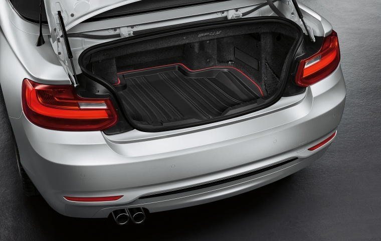 2017 BMW 2-Series Convertible Trunk Picture