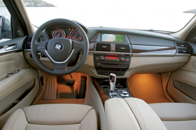 2010 BMW  X5 Picture