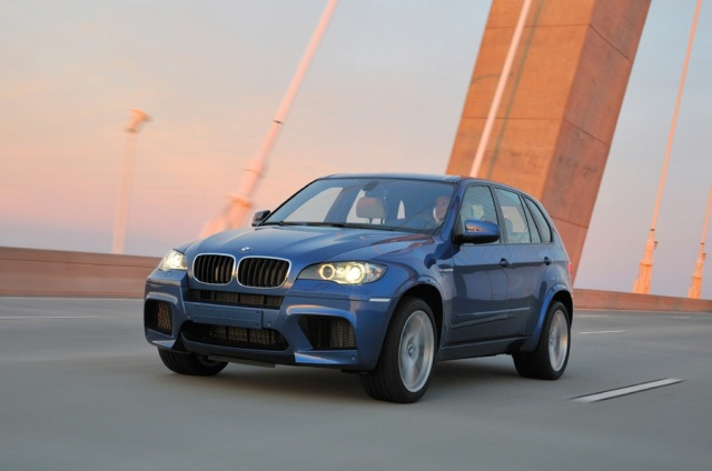 2011 BMW  X5 Picture