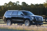 Picture of 2015 Cadillac Escalade in Black Raven