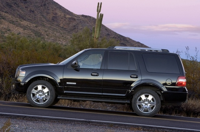 2010 Ford  Expedition Picture