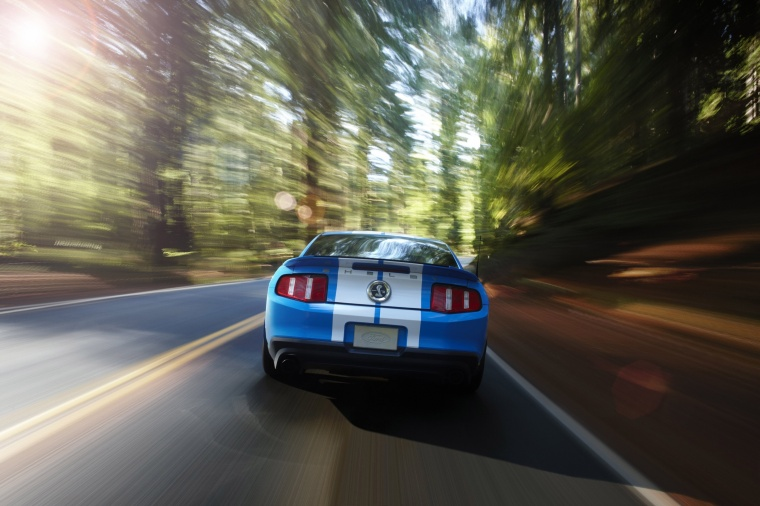 2010 Shelby GT500 Coupe Picture