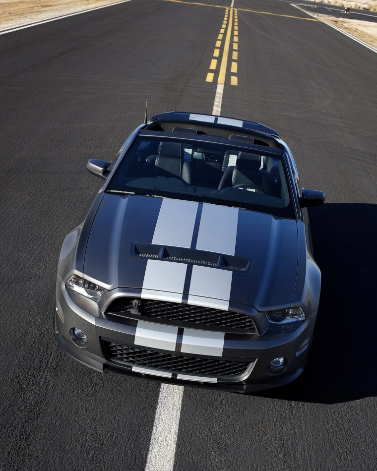 2010 Shelby GT500 Convertible Picture