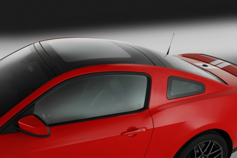 2011 Shelby GT500 Coupe Roof Picture