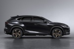 Picture of a 2019 Lexus NX300h in Caviar from a side perspective