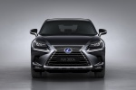 Picture of a 2019 Lexus NX300h in Caviar from a frontal perspective