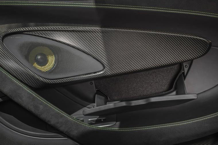 2016 McLaren 570S Coupe Door Panel Picture