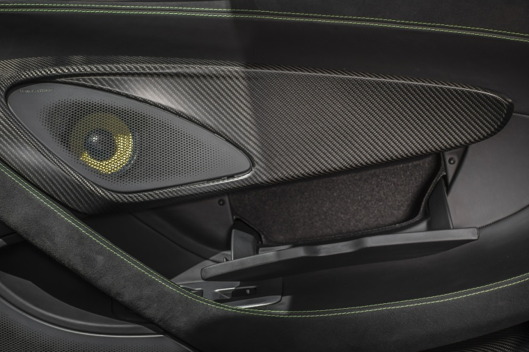 2017 McLaren 570S Coupe Door Panel Picture