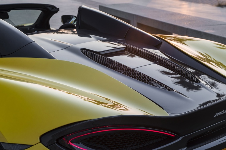 2018 McLaren 570S Spider Rear Engine Cover Picture