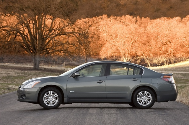 2010 Nissan  Altima Picture
