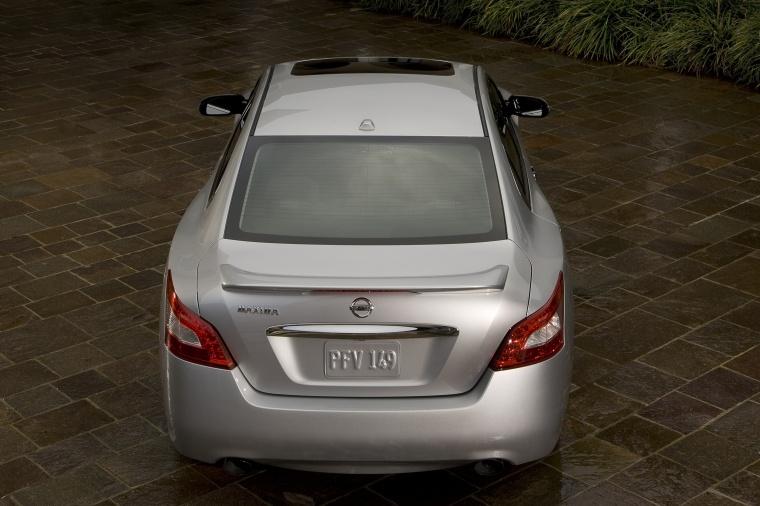 2010 Nissan Maxima Picture